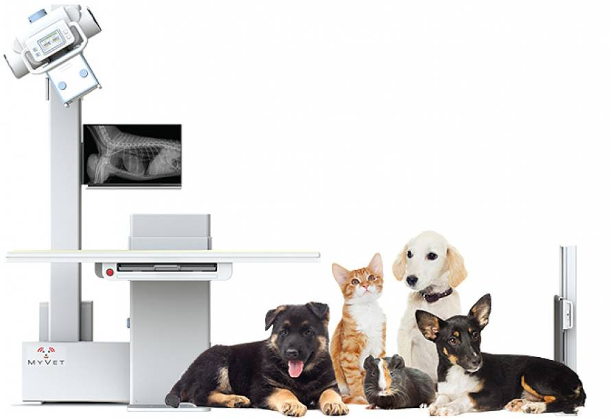 Veterinary Digital Radiographic system
